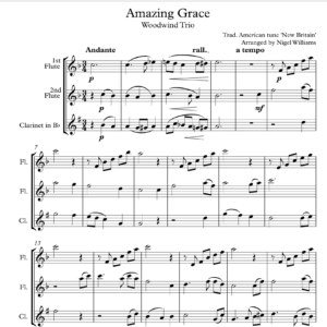 Amazing Grace, for Woodwind Trio