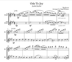 Ode To Joy (Joyful Joyful) for Flute Duet
